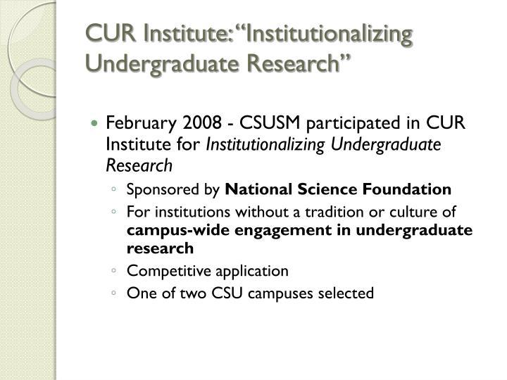 """CUR Institute: """"Institutionalizing Undergraduate Research"""""""