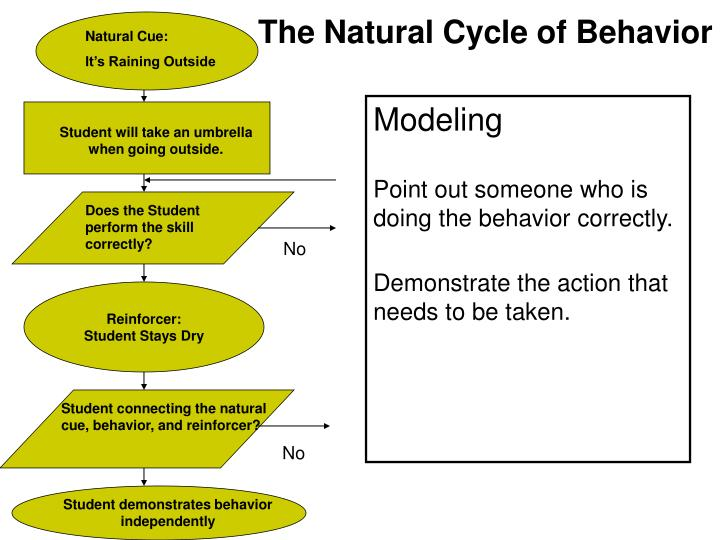 The Natural Cycle of Behavior