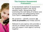 the common assessment framework1