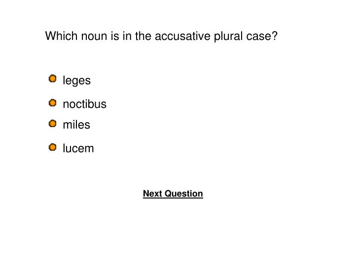 Which noun is in the accusative plural case?