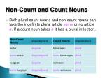 non count and count nouns
