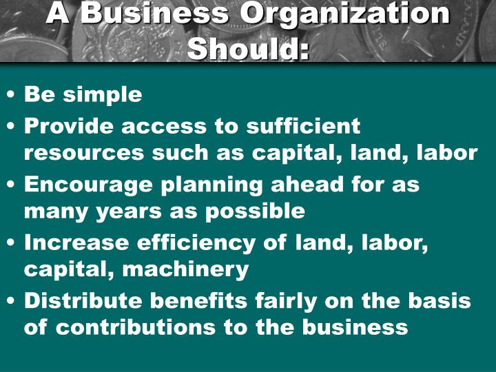 A business organization should