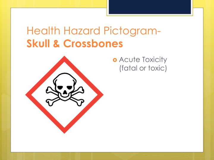 Health Hazard Pictogram-