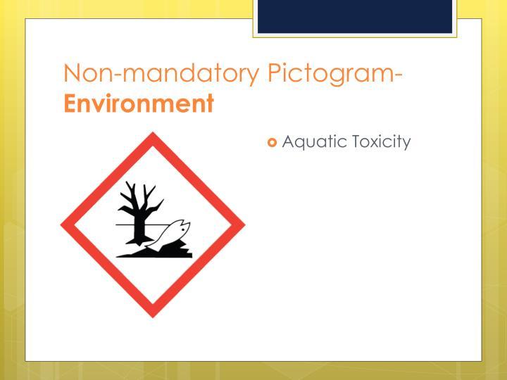 Non-mandatory Pictogram-
