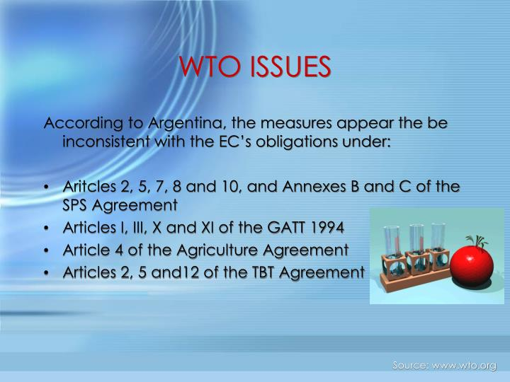 WTO ISSUES