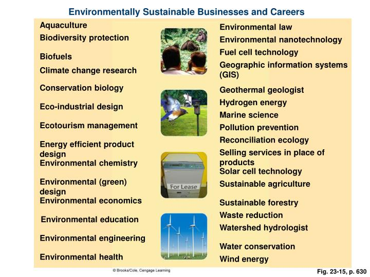Environmentally Sustainable Businesses and Careers