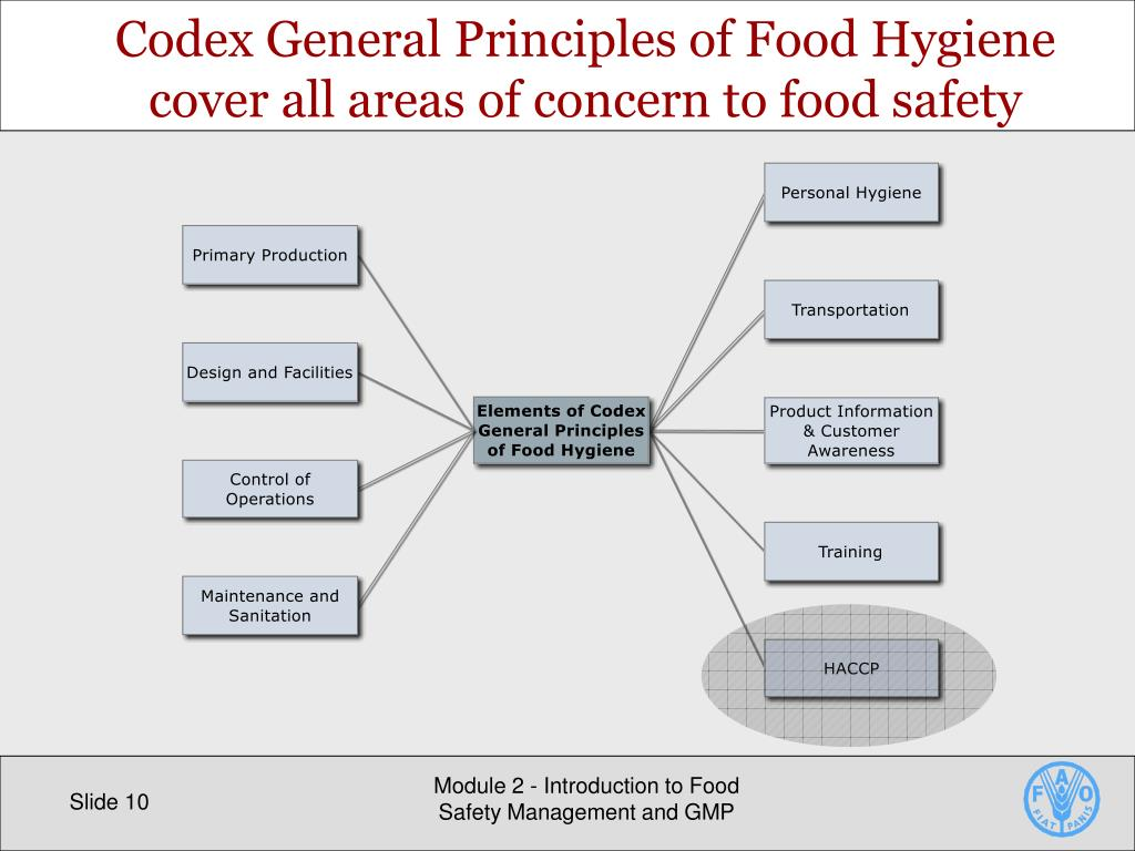 PPT - Introduction to Food Safety Management and GMP PowerPoint