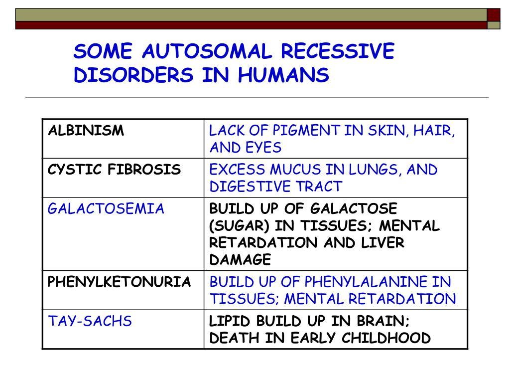PPT - 14-1 HUMAN HEREDITY 14-2 HUMAN CHROMOSOMES 14-3 ...