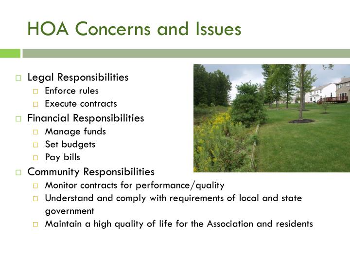 HOA Concerns and Issues