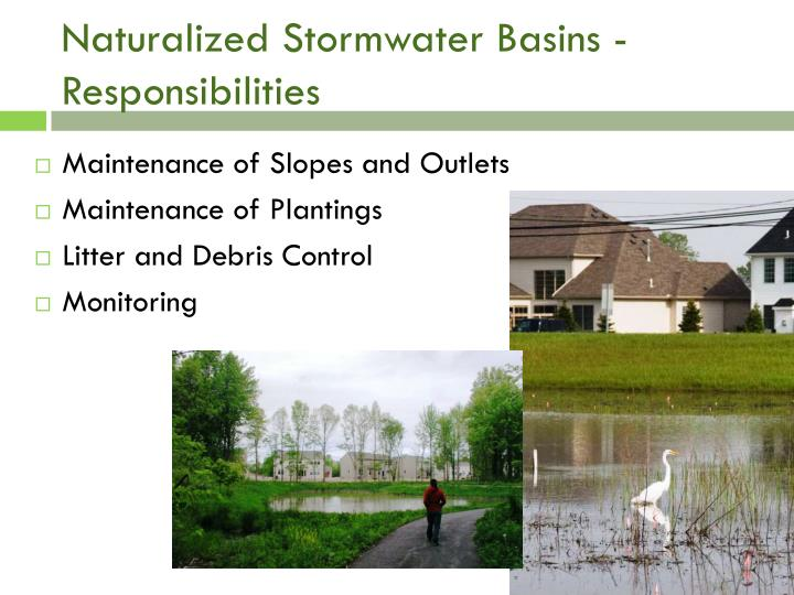 Naturalized Stormwater Basins - Responsibilities