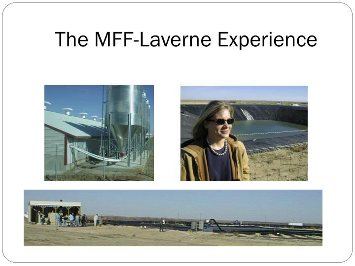 The MFF-Laverne Experience