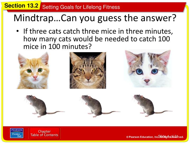 Mindtrap can you guess the answer