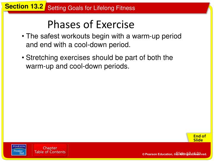 Phases of Exercise
