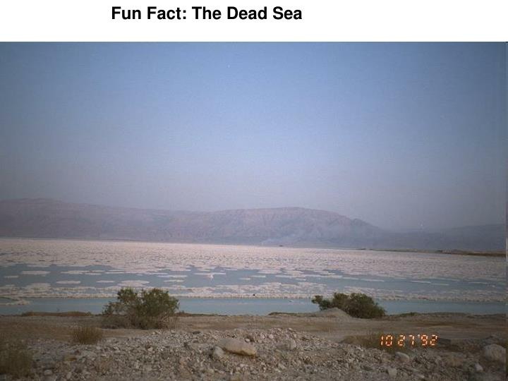 Fun Fact: The Dead Sea
