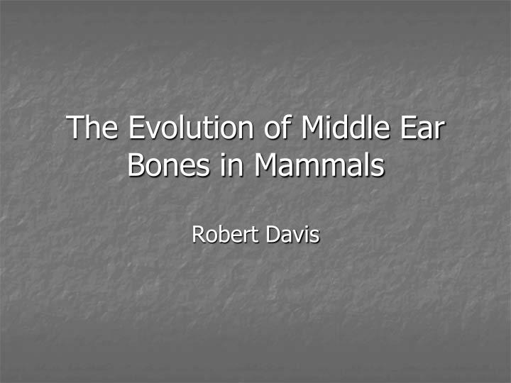 the evolution of middle ear bones in mammals n.