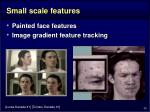 small scale features