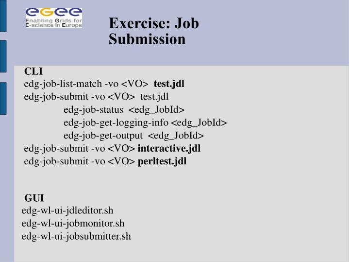 Exercise: Job Submission