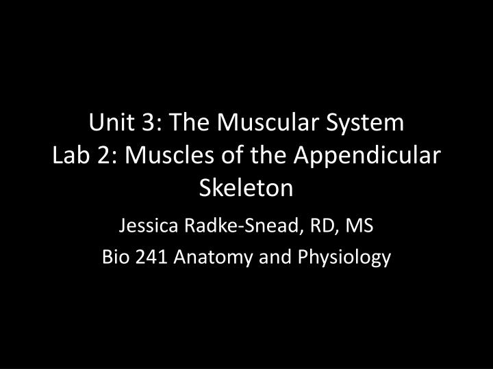 PPT - Unit 3: The Muscular System Lab 2: Muscles of the Appendicular ...