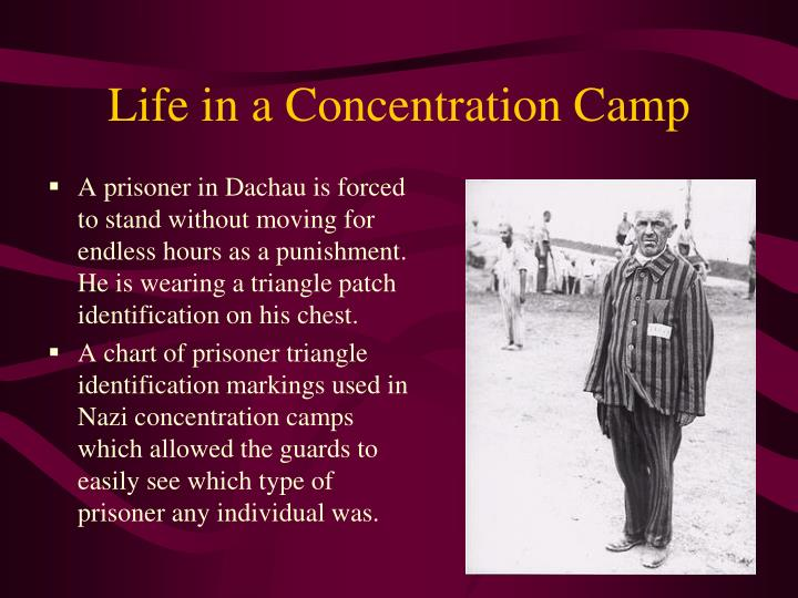 Life in a Concentration Camp