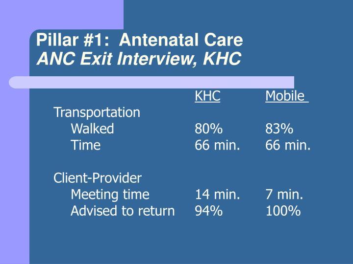 Pillar #1:  Antenatal Care