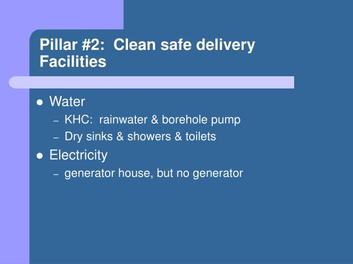 Pillar #2:  Clean safe delivery