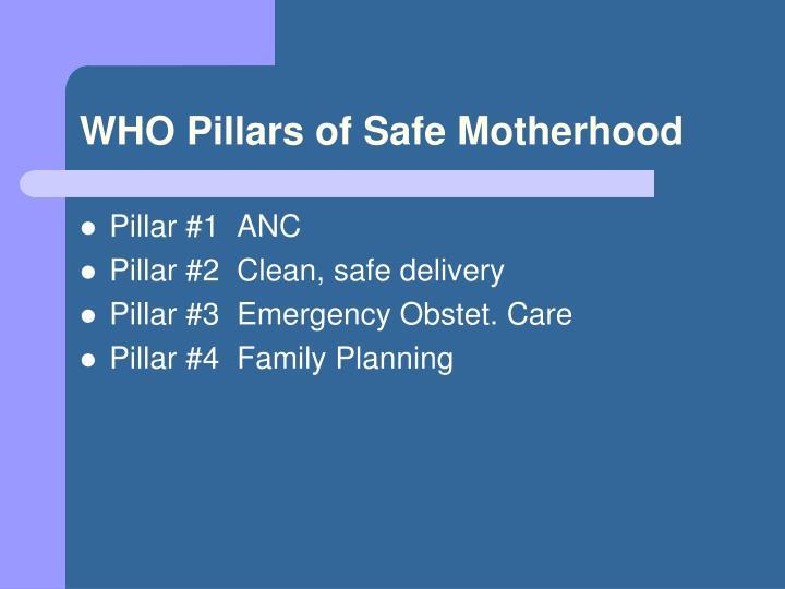WHO Pillars of Safe Motherhood
