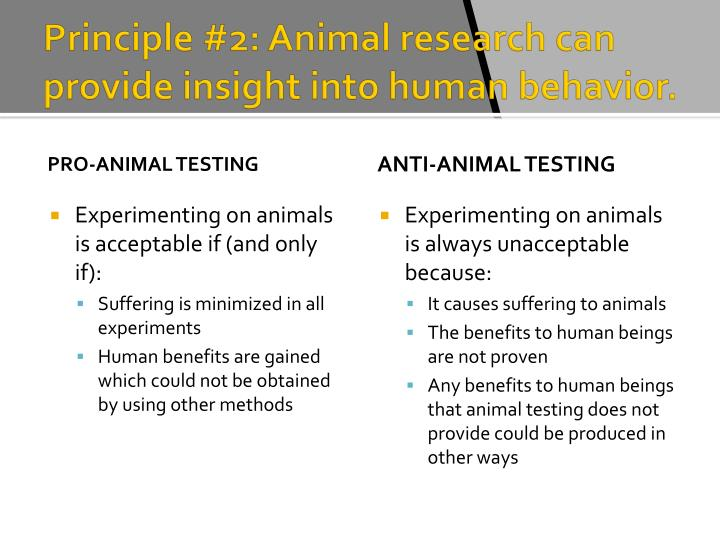 the principles of the animal testing from the human perspective Deontology and animal rights more free graphics deontology is a theory that evaluates moral actions based only on doing one's duty, not on the consequences of the actions.