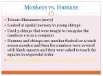 monkeys vs humans