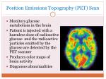 position emissions topography pet scan