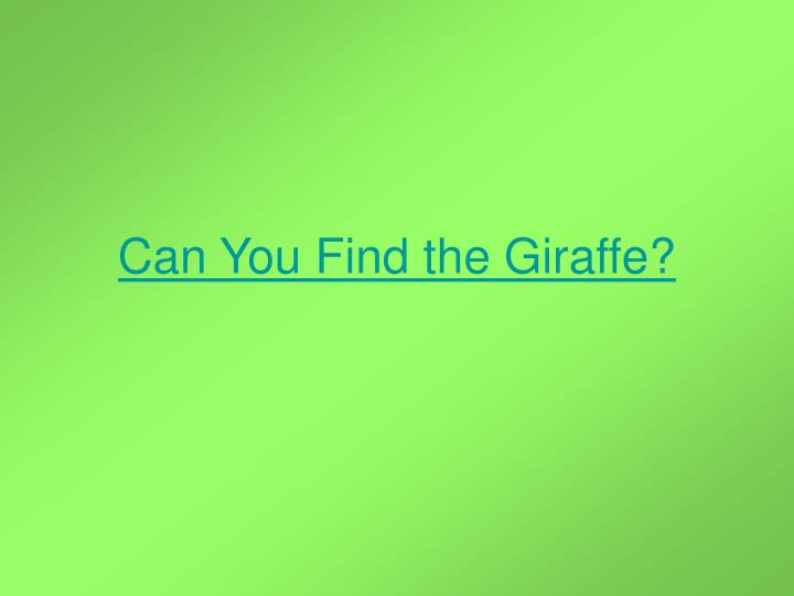 Can You Find the Giraffe?