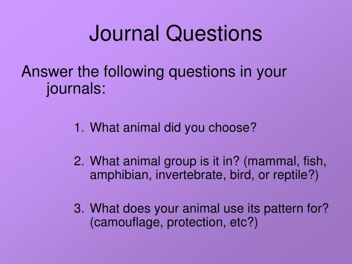 Journal Questions
