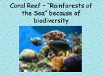 coral reef rainforests of the sea because of biodiversity
