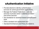 eauthentication initiative