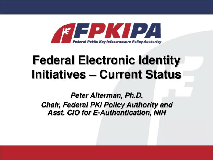 federal electronic identity initiatives current status n.