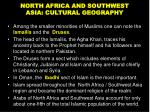 north africa and southwest asia cultural geography7