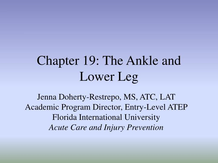 chapter 19 the ankle and lower leg n.