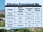 effective promotional mix