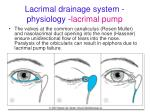 lacrimal drainage system physiology lacrimal pump