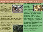 theme 1 3 more forest sme cases from lao pdr