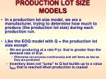 production lot size models
