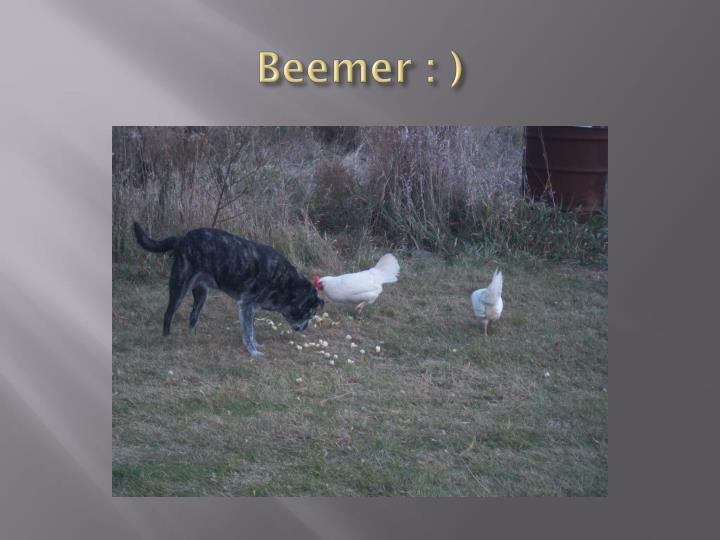 Beemer : )