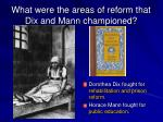 what were the areas of reform that dix and mann championed
