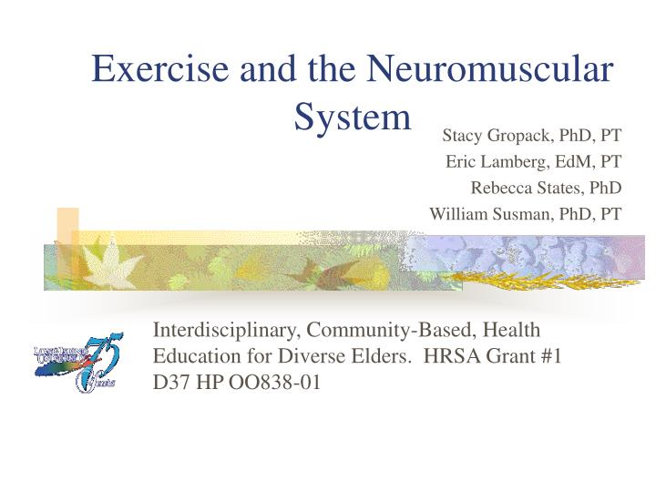 exercise and the neuromuscular system n.