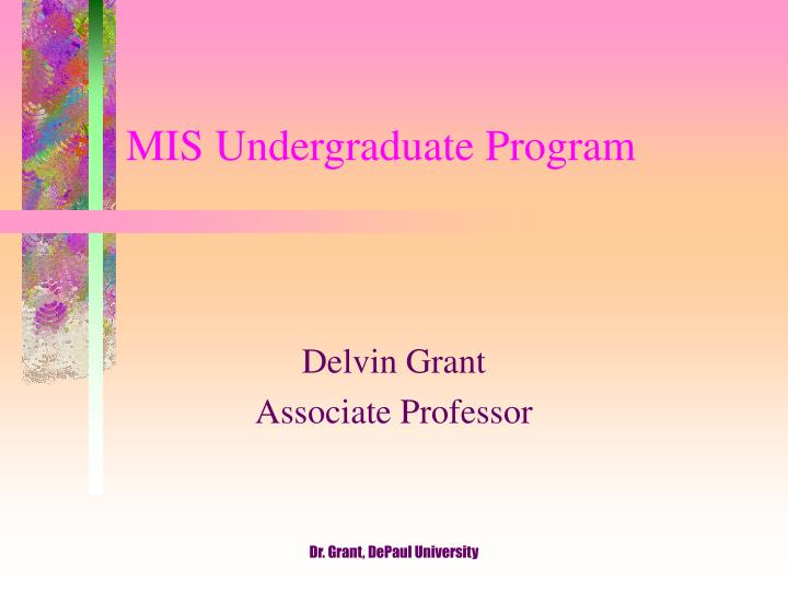 mis undergraduate program n.