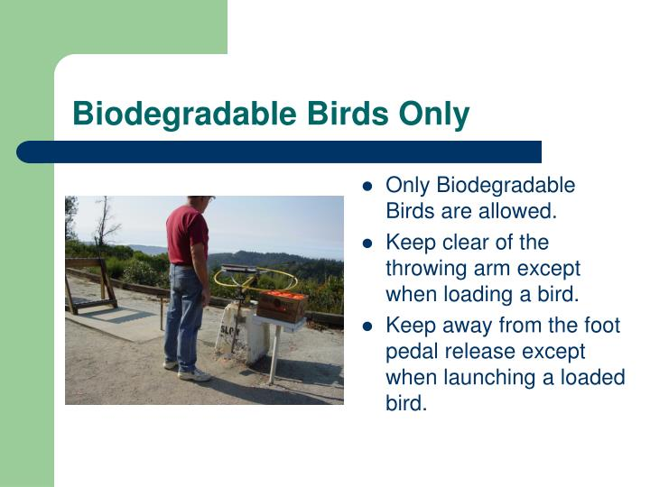 Biodegradable birds only