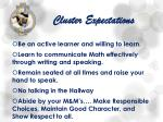 cluster expectations1