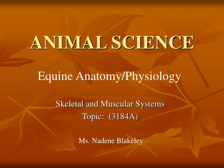 animal science n.