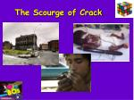 the scourge of crack