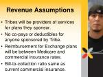 revenue assumptions