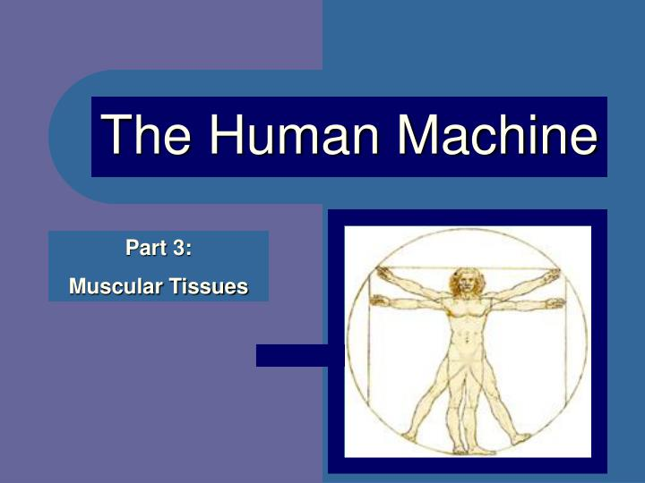 the human machine n.